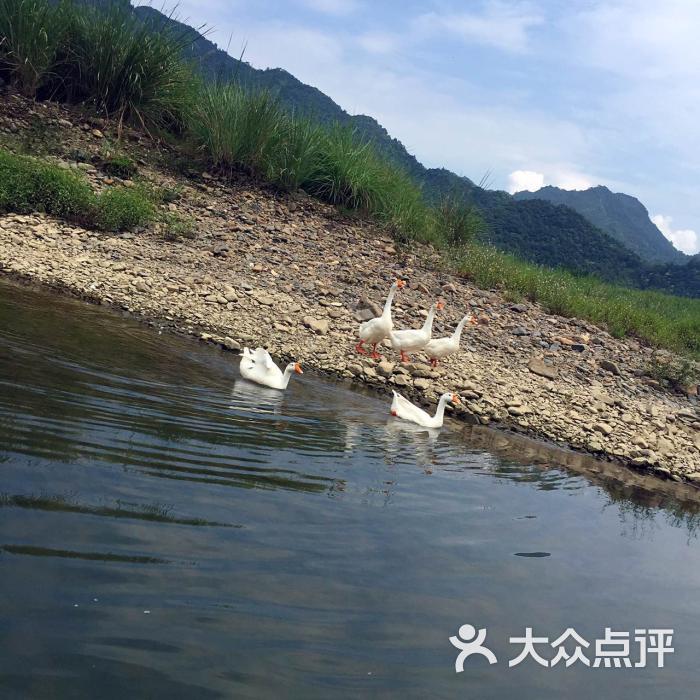 江南第一漂的全部评价-泾县-大众点评网