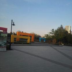 【群力公园地址】时间_丁香_电话_营业价格_丁香花亚洲综合图片
