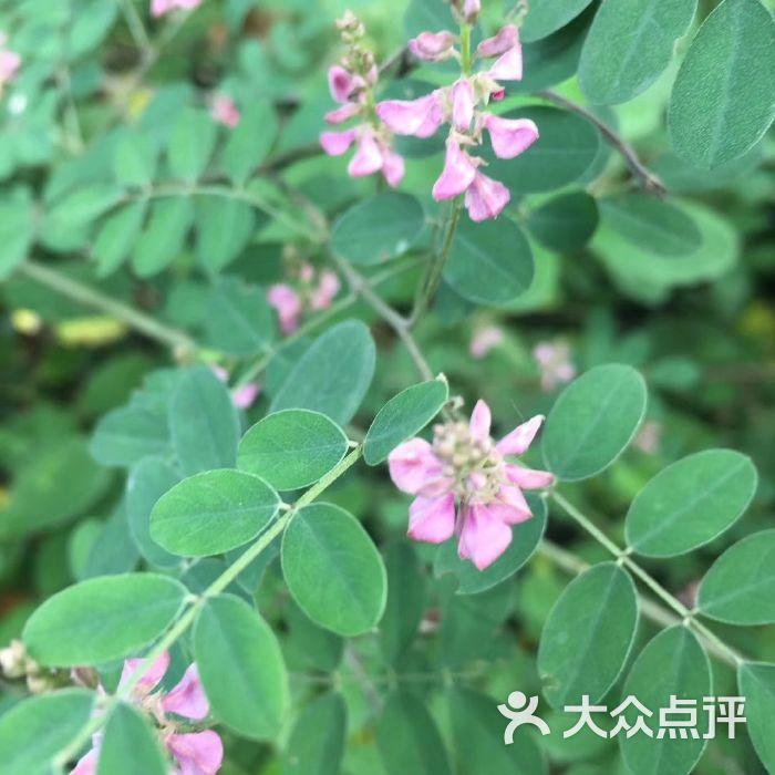 惠山国家森林公园