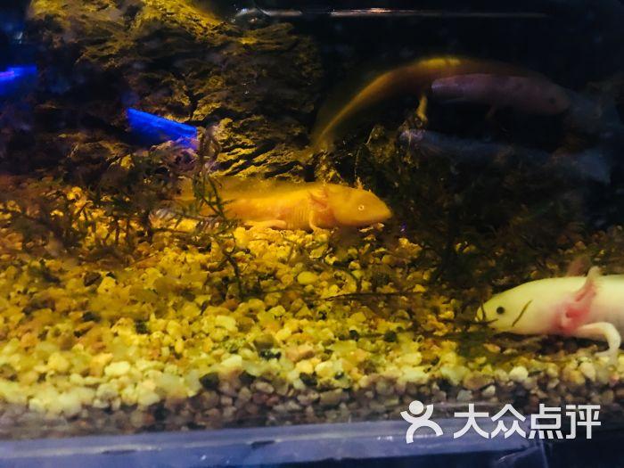天津zoonly动物主题公园图片 - 第5张