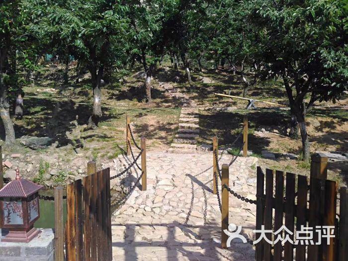 青岛藏马山悠然谷度假村-图片-青岛酒店-大众点评网