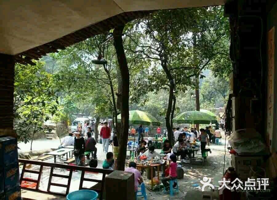 兰亭森林公园大自然户外烧烤-图片-柯桥区美食-大众