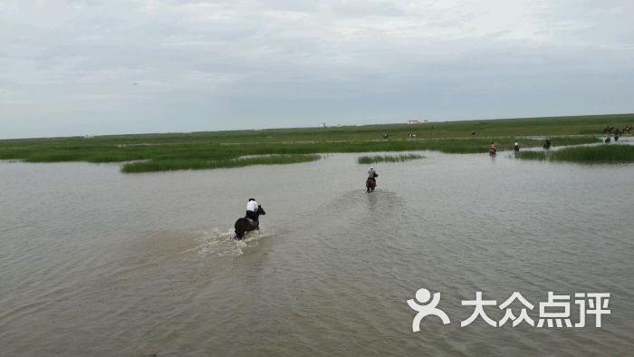 上海横沙岛马术俱乐部惊帆马场-图片-崇明县运动健身