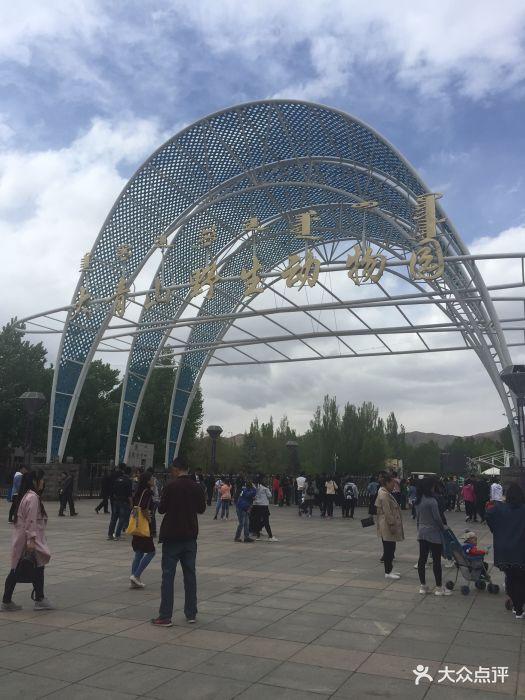 大青山野生动物园图片 - 第3张