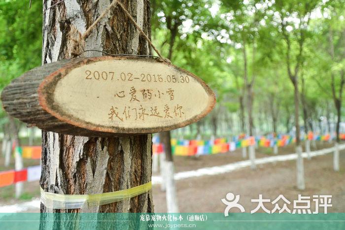 宠慕丨宠物火化宠物殡葬宠物标本(通顺店)-树葬图片