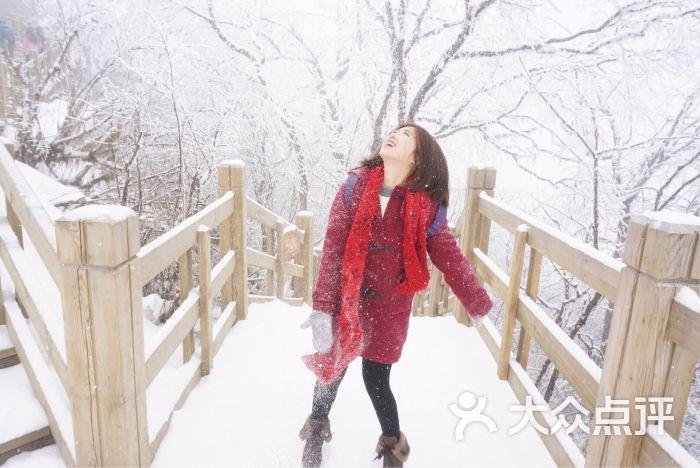 西岭雪山风景区图片 - 第1张