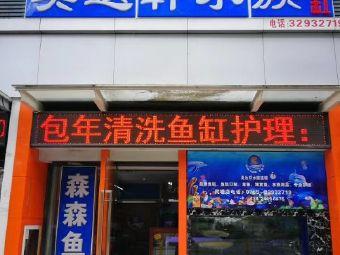 美达轩水族(七里香榭店)