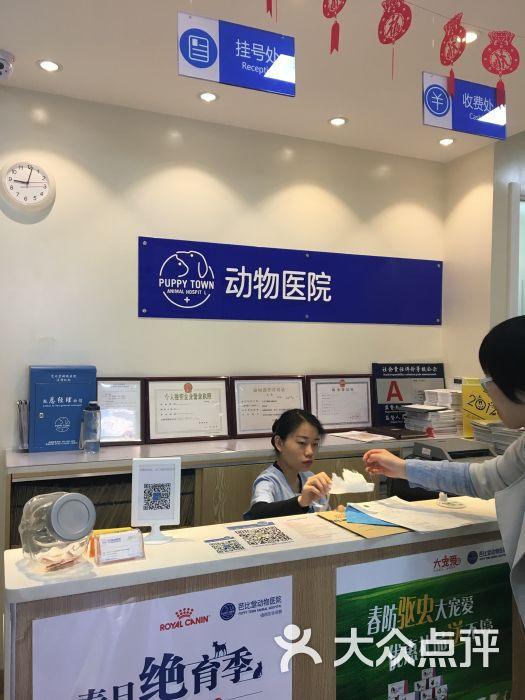 芭比堂动物医院(北京白广路分院)的点评