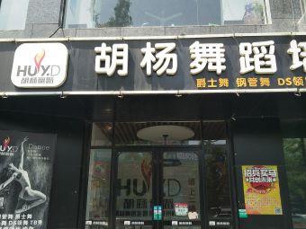 胡杨成人舞蹈培训连锁机构