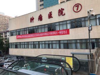 河南科技大学临床医学院