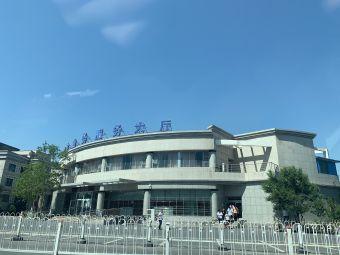 乌拉泊驾考中心