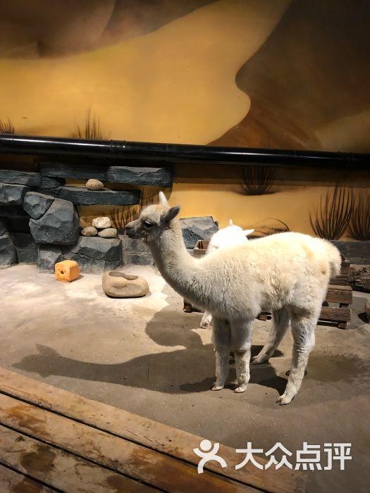 天津zoonly动物主题公园图片 - 第6张