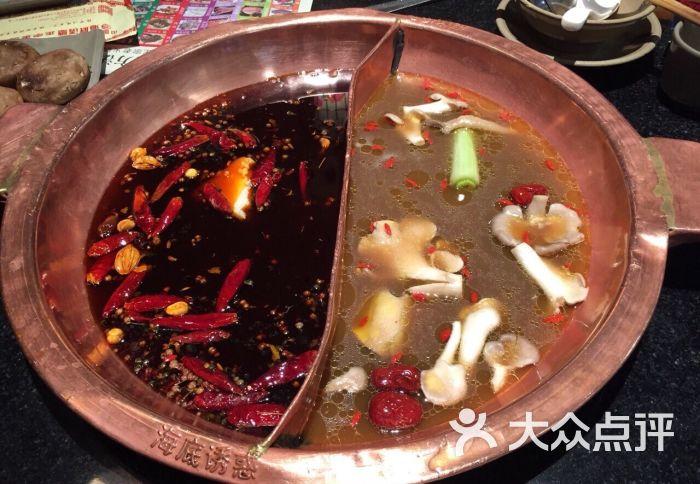 海底诱惑重庆老火锅(浦上乐都汇店)-图片-福州美食