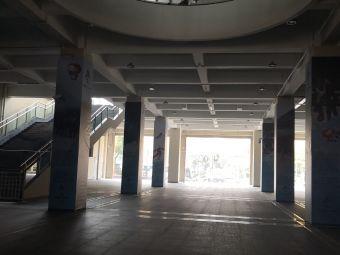 三林體育中心足球場