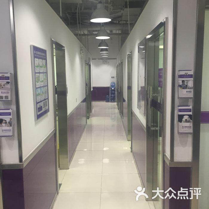 思威国际动物医院(朝外soho分院)-图片-北京宠物