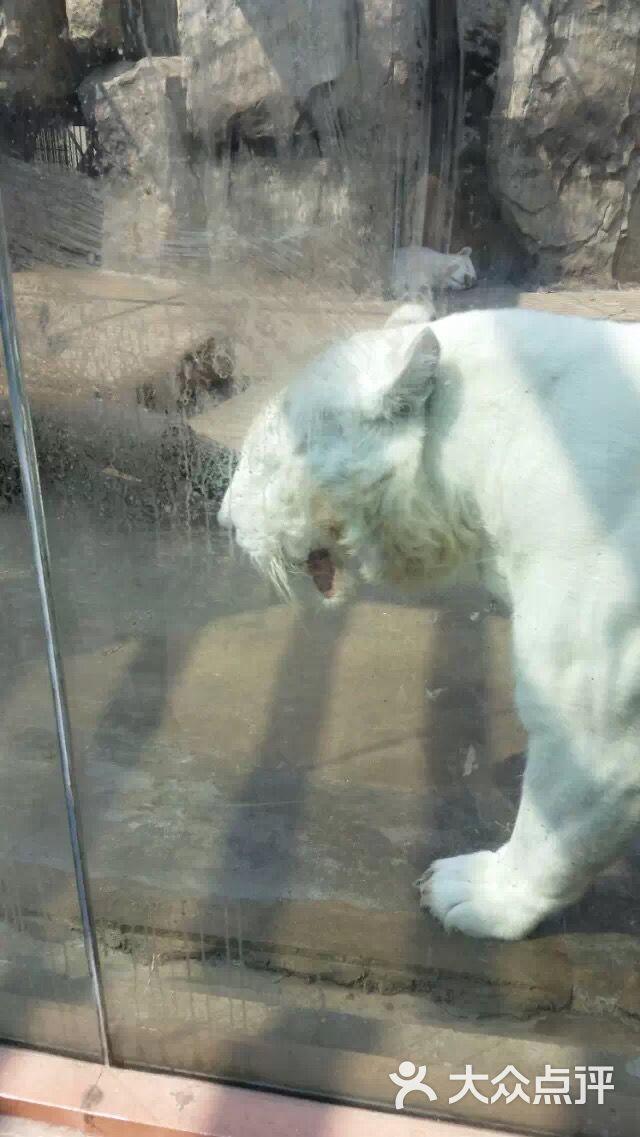南昌新动物园图片 - 第256张