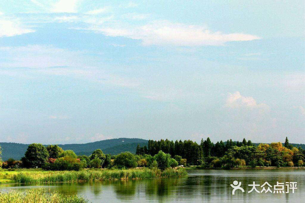 东湖落雁岛-图片-武汉周边游-大众点评网