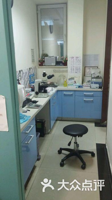 美联众合动物医院(伴侣分院)-图片-北京宠物-大众点评