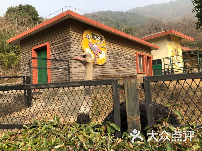 无锡动物园·太湖欢乐园图片 - 第11张