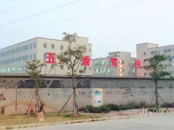 晋江五通驾校