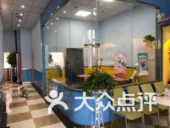 依心爱宠物医院(曲江旗舰店)