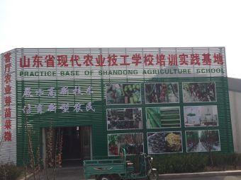 山东省党员干部现代农业培训基地