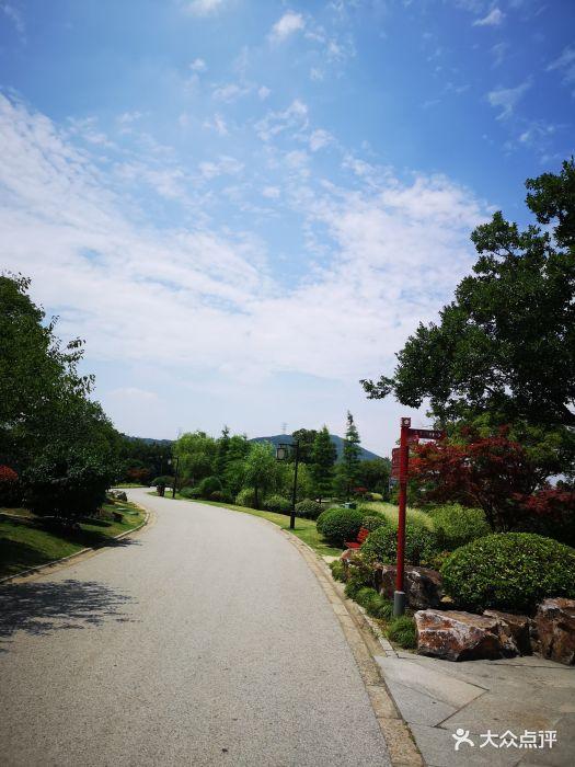 梅园横山风景区图片 - 第103张
