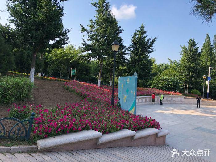 青岛植物园图片 - 第157张