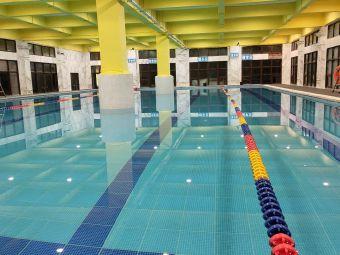 V力游泳健身