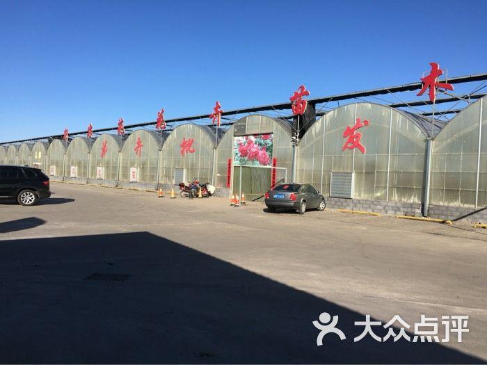朔州市朔城区新农苑花卉苗木培育中心