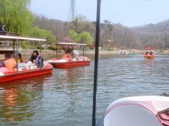 湖光山色水上划船