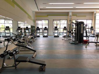 同里湖大饭店健身房