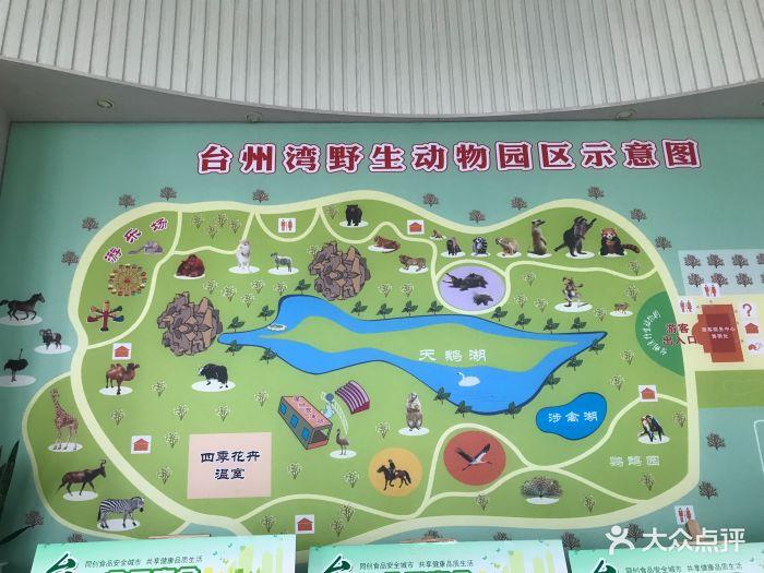 台州湾野生动物园图片 - 第8张