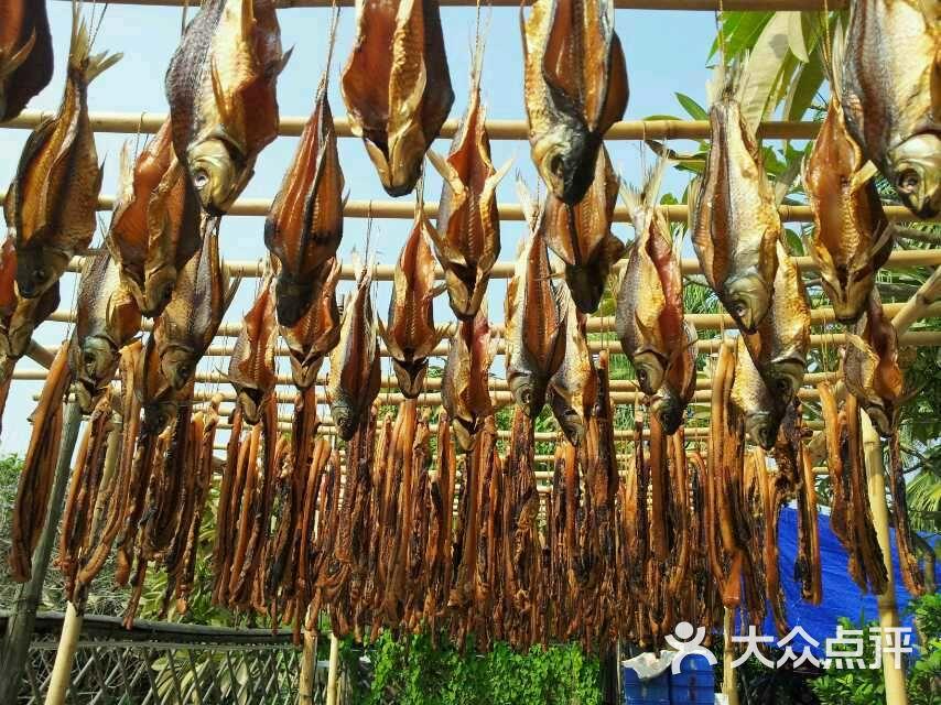 橄榄树农庄-鲜晒土鲮鱼干图片-顺德区美食-大众点评