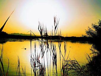 博斯腾湖国家重点风景名胜区售票处