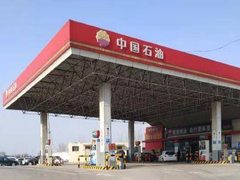 中国石油加油站(济南植物园东南)