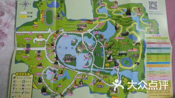 上海野生动物园图片-北京动物园-大众点评网