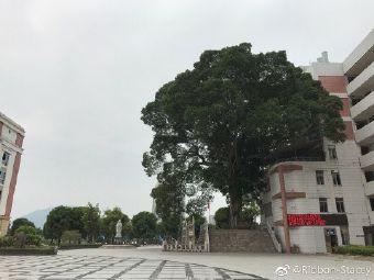 漳州市第二中学