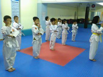 星之光跆拳道培训中心