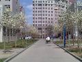 河北农业大学(西校区)