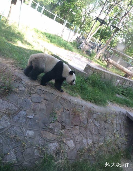 天津动物园图片 - 第33张