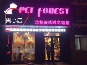 宠物森林时尚造型
