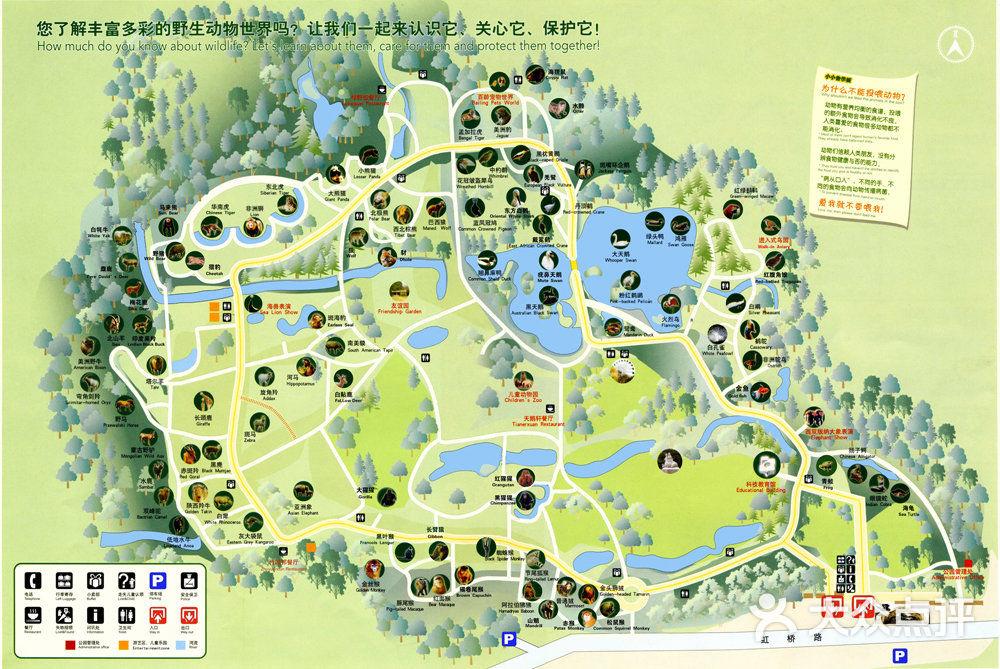 上海动物园地图图片 - 第1张