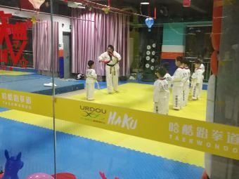 哈酷跆拳道(大儒世家店)