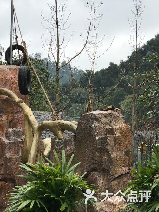黔灵山动物园-图片-贵阳周边游-大众点评网