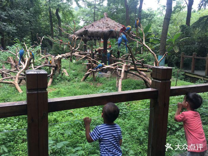 杭州动物园图片 - 第1701张
