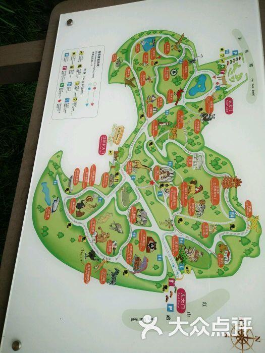 红山森林动物园-地图图片-南京景点-大众点评网
