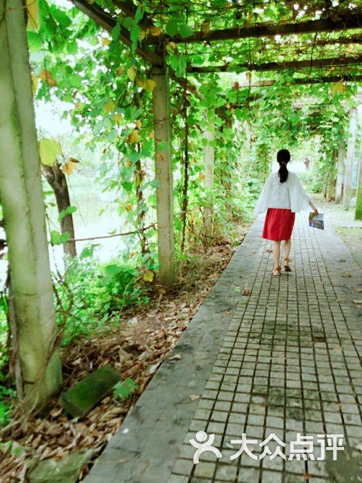 东莞寮步香市动物园图片 - 第9张