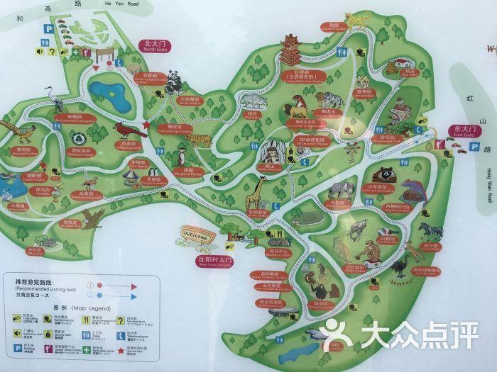 红山森林动物园图片 - 第1100张