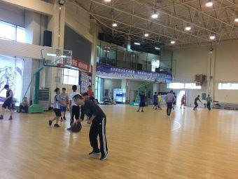 阳光飞人篮球俱乐部